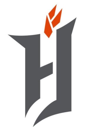 Forge FC main logo crop